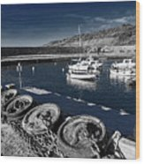 Unplugged At The Harbour - Toned Wood Print