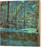 Unseen Wetland Wood Print