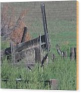 Untended Fences Wood Print