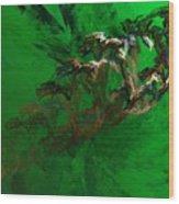Untitled 01-15-10 Wood Print