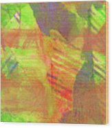 Untitled #13 Abstract Multicolor Wood Print