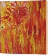 Untitled 20x24 Wood Print