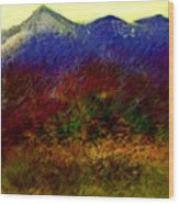 Untitled 4-11-10 Wood Print