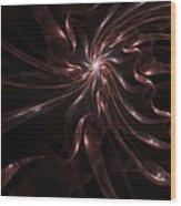 Untitled 4-28-10 Wood Print