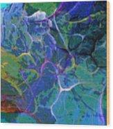 Untitled 5-2-10-a Wood Print