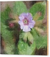 Untitled Floral -1 Wood Print