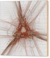Untitled066 Wood Print