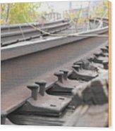 Unused Rail Wood Print