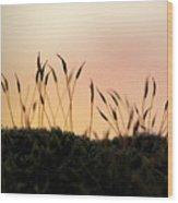 Unusual Sunset Wood Print