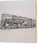 Up 3985 Wood Print