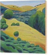 Up Bernal Road Wood Print