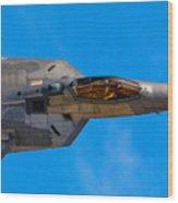 Up Close F-22 Raptor Wood Print
