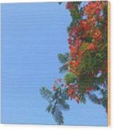 Up- Gulmohar Wood Print
