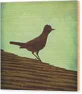 Up On A Roof Wood Print by Amy Tyler