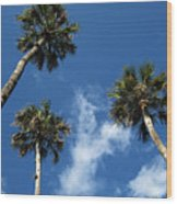 Up To The Sky Palms Wood Print