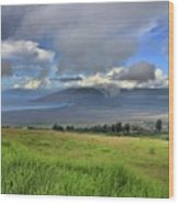 Upcountry Maui Wood Print
