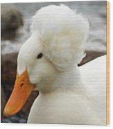 Updo Duck Wood Print