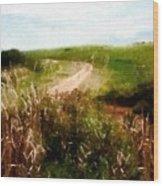 Uphill Curve Wood Print