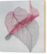 Uplifted Wood Print