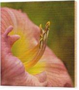 Uplifting Lily Wood Print