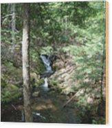 Upper Adler Falls 4405 Wood Print