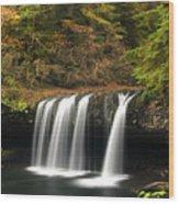 Upper Butte Creek Falls 2 Wood Print