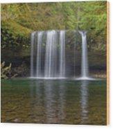 Upper Butte Creek Falls In Fall Season Wood Print