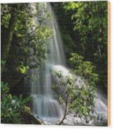 Upper Catawba Falls Wood Print