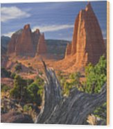 212645-upper Cathedral Valley  Wood Print