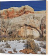 Upper Colorado River Scenic Byway Wood Print