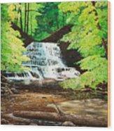 Upper Falls At Salt Springs Wood Print