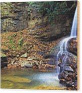 Upper Falls Holly River Wood Print