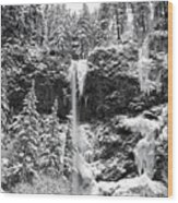 Upper Falls In Snow's Cover Wood Print