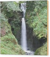 Upper Falls Wood Print