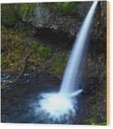 Upper Horsetail - Pony Tail Falls Wood Print