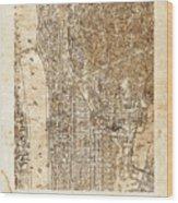 Upper Manhattan Wood Print