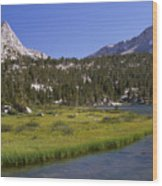 Upper Pine Lake Wood Print