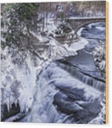 Upper Taughannock Winter Wood Print