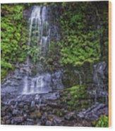 Upper Terrace Falls Wood Print