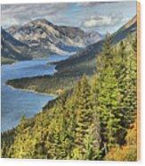 Upper Waterton Lake Valley Wood Print