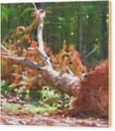 Uprooted Trees Wood Print