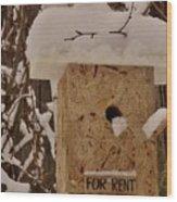 Upscale Bird Loft For Rent Wood Print