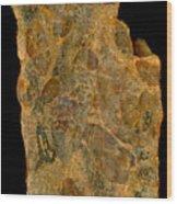 Uranium Ore Conglomerate Wood Print