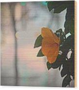 Urban Flora Wood Print