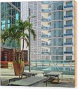Urban Landscape, Miami, Florida Wood Print