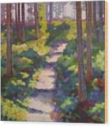Urban Trail Climb Wood Print