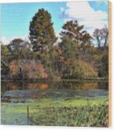Urieville Pond Wood Print