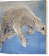 Ursus Maritimus Two Wood Print