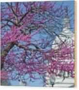 Us Capitol Wood Print