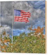 Us Flag 8091 Wood Print